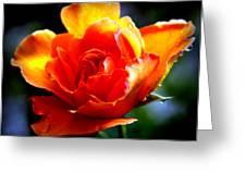 Gypsy Rose Greeting Card by Karen Wiles