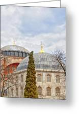 Hagia Sophia 11 Greeting Card by Antony McAulay