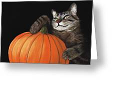 Halloween Cat Greeting Card by Anastasiya Malakhova