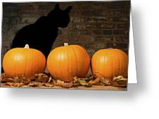 Halloween Pumpkins And The Witches Cat Greeting Card by Amanda And Christopher Elwell