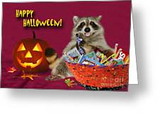 Halloween Raccoon Greeting Card by Jeanette K