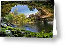 Hamilton Pool Greeting Card by Lisa  Spencer