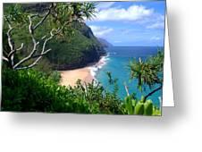 Hanakapiai Beach Greeting Card by Brian Harig