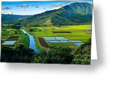 Hanalei Valley Greeting Card by Inge Johnsson