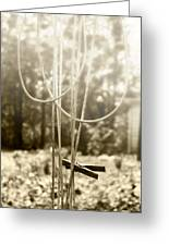 Hang It Up Greeting Card by Kristie  Bonnewell