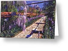 Hanging Garden Greeting Card by David Lloyd Glover