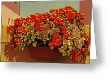 Hanging Pot With Geranium Greeting Card by Ben and Raisa Gertsberg