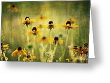 Happiness Greeting Card by Joan McCool