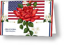 Happy Birthday America Greeting Card by Anne Norskog