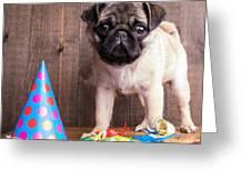 Happy Birthday Cute Pug Puppy Greeting Card by Edward Fielding