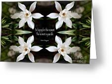 Happy - Omar Khayyam Quote  Greeting Card by Susan Bloom