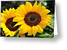 Happy Sunflowers Greeting Card by Kaye Menner