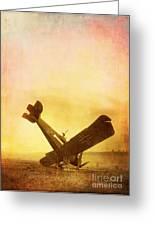 Hard Landing Greeting Card by Edward Fielding