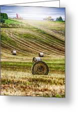 Harvest Day Greeting Card by Erik Brede