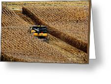 Harvest Time Greeting Card by Eva Kato