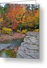Haw Creek Fall 2 Greeting Card by Marty Koch