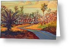 Hawaii Shadow Road Greeting Card by Dan Young