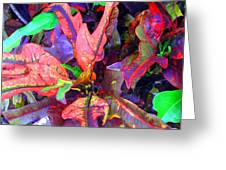 Hawaiian Foliage Greeting Card by Jean Hall