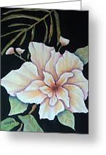 Hawaiian Pua Greeting Card by Pamela Allegretto