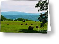 Hay Bails Greeting Card by William Norton