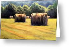 Hay Bales Greeting Card by Janet King