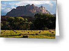 Hay Bales Rockville Utah Greeting Card by Robert Ford