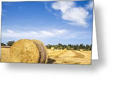 Hay Bales Under Deep Blue Summer Sky Greeting Card by Colin and Linda McKie