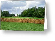 Hay Day Greeting Card by Steven  Michael
