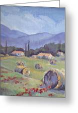 Haybales And Poppies Of Provence Greeting Card by Linda  Wissler