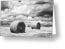 Haybales Uk Greeting Card by Jon Boyes