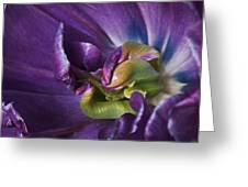 Heart Of A Purple Tulip Greeting Card by Rona Black