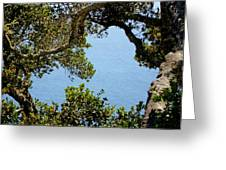 Heart Of Nepenthe - Big Sur Greeting Card by Phoenix The Moody Artist