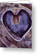 Heart Of Stone Greeting Card by Gun Legler