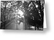 Heavenly Light Greeting Card by Eros Peterson