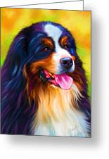 Colorful Bernese Mountain Dog Painting Greeting Card by Michelle Wrighton