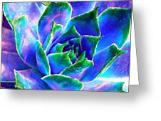 Hens And Chicks Series - Touches Of Blue  Greeting Card by Moon Stumpp