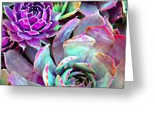 Hens and Chicks series - Urban Rose Greeting Card by Moon Stumpp