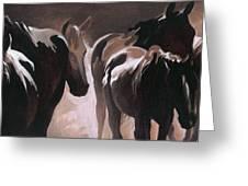 Herd Of Horses Greeting Card by Natasha Denger