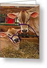 Heres Looking At You Greeting Card by Michael Porchik