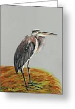 Heron Greeting Card by Anastasiya Malakhova