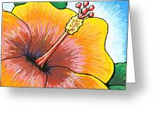 Hibiscus Number 2 Greeting Card by Adam Johnson