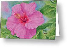 Hibiscus Greeting Card by Rhonda Leonard