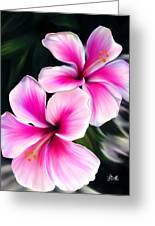 Hibiscuses Greeting Card by Laura Bell