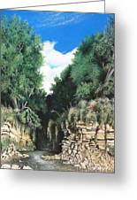 Hidden Canyon Greeting Card by David Neace