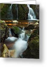 Hidden Falls Greeting Card by Matt Dobson