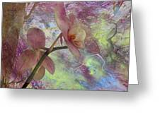 Hidden Orchid Greeting Card by Donna Walsh