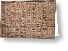 Hieroglyphs At The Temple Of Philae Greeting Card by Stephen & Donna O'Meara