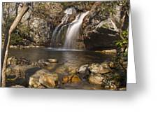 High Falls Talledega National Forest Alabama Greeting Card by Charles Beeler