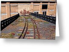 High Line Spur Greeting Card by Rona Black