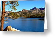 High Sierra Gem Greeting Card by Lynn Bawden